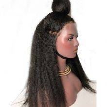 Kinky Straight Lace Front Brazilian Hair Wig